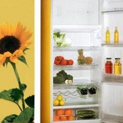 Ремонт бытовых холодильников любой сложности