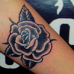 Tattoo Stark ✖Contrast Tattoo