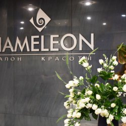 Салон красоты Hameleon